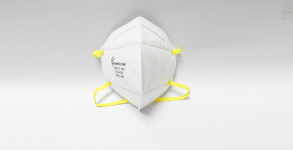 N95 Disposable Particulate Respirator2